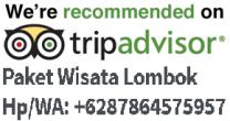 cropped-paket-wisata-lombok-tour-gili-trawangan-rinjani-trekking.png